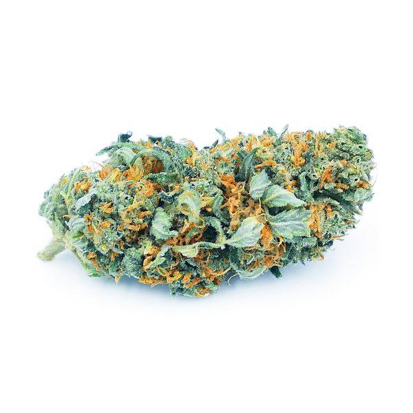 blueberry bg