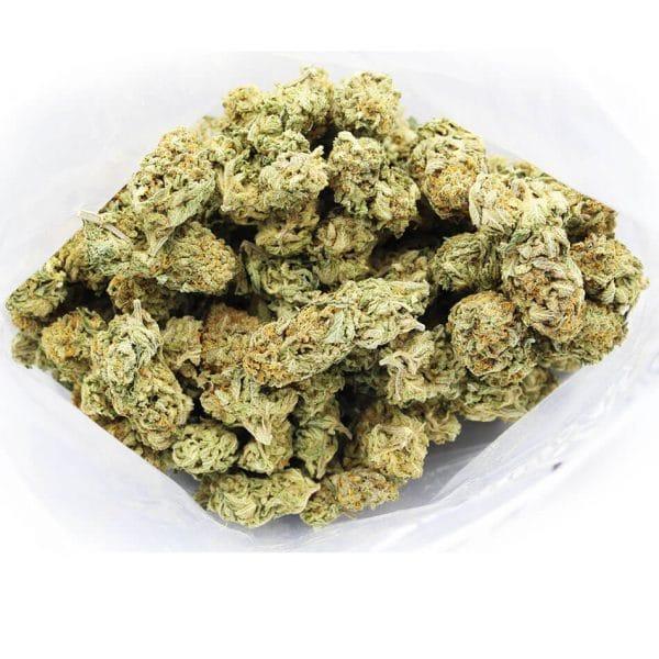 Gorilla Cookies AA secondary pic 2 1