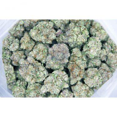 blueberry cookies aaaa bag bgbso