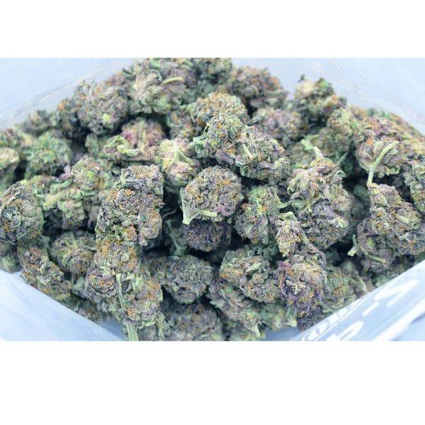 purpledream aaa bag bg