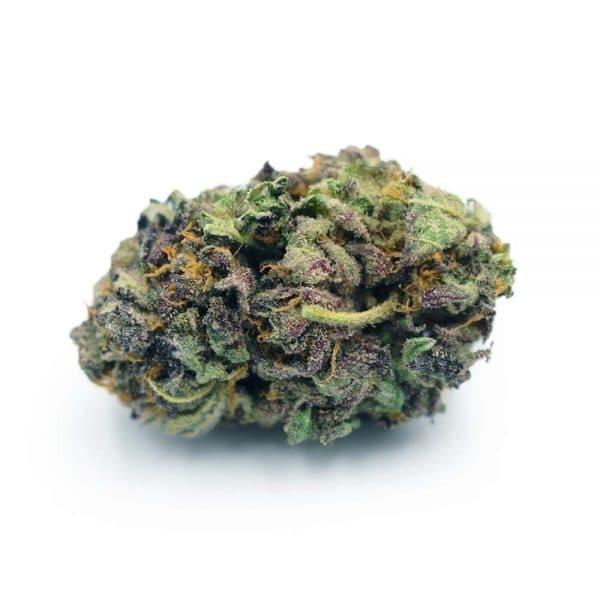 purpledream aaa bg
