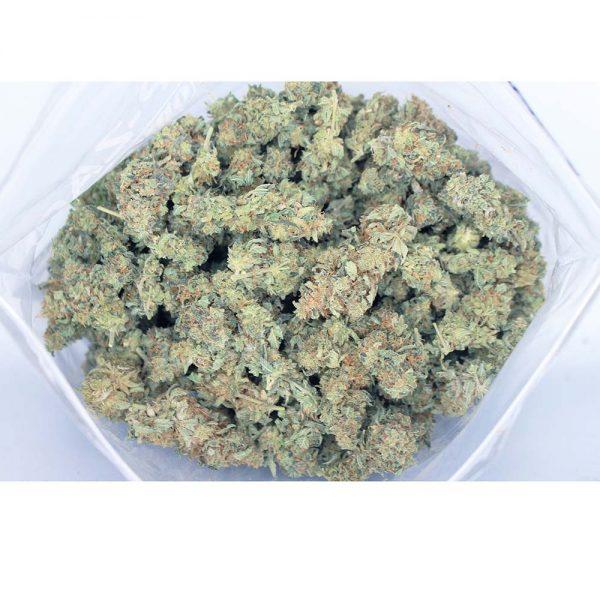 blackberry aa bag bg