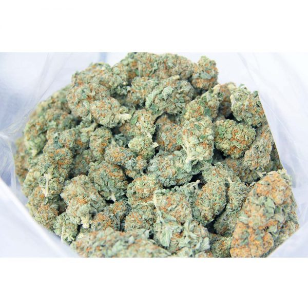 blueberry aa bag bg