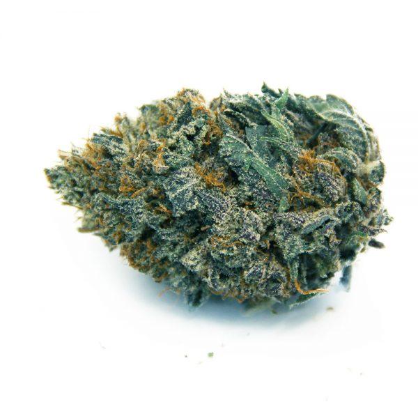 Blueberry AK AA 1