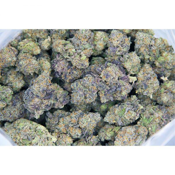 Purple Haze AAAA 1