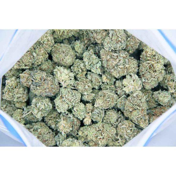 cotton candy aa bag bgbso