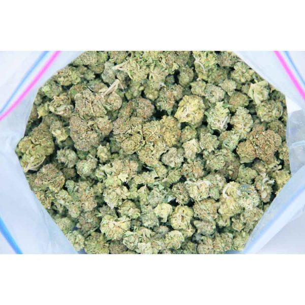 whiteberry popcorn aa bag bgbso