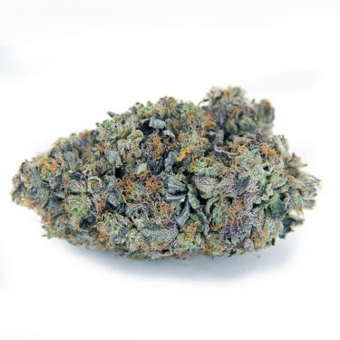 Peyote Purple AAA 1