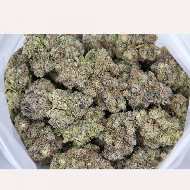 Purple Candy AAA 1