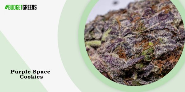 Purple Space Cookies