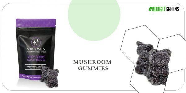 mushroom gummies